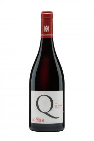 Allendorf 2009 Quercus Pinot Noir QbA trocken *Aus der Schatzkammer*